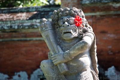 Bali_Ubud_2016_Worldviber_21