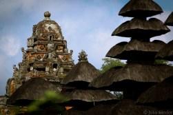 Bali_Ubud_2016_Worldviber_22