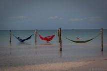 Koh Rong Samloem: hammocks