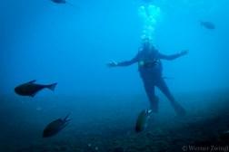 Bali_diving_2016_33