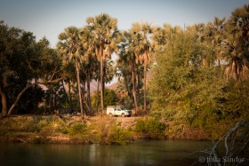 Our camping spot under palm trees at the riverside.