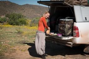 Idyllic camping