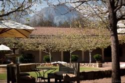 Winery in Stellenbosch