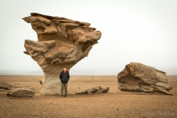 The Arbol de Piedra (Stone tree) is just one of many fascinating rock formations in this area.