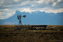 Idyllic summer day in Patagonia