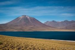 Laguna Miscanti on 4300 m