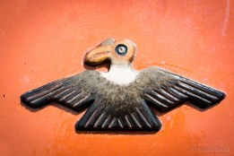 The condor is one of the sacred animals of the Incas (together with the puma and snake)