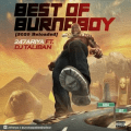 DJ Taliban – Best Of Burna Boy (2020 Reloaded)