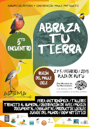 Colourful poster for Abraza tu Tierra