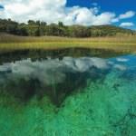 Translucent green water, vibrant green vegetation, deep blue sky