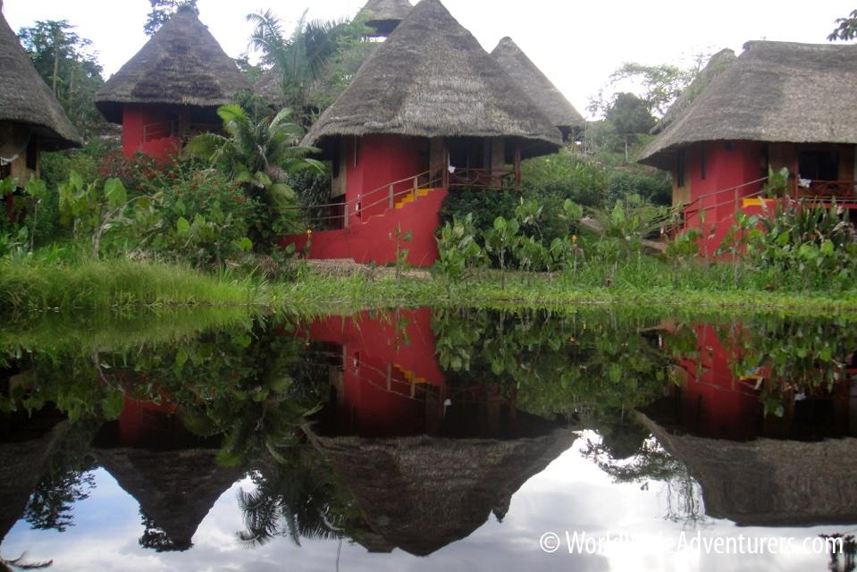 Amazon Napa Ecuador 17
