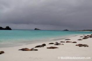 Galapagos Islands 8