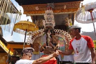 Living in Bali10