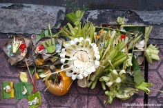 Living in Bali119