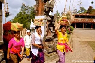 Living in Bali44