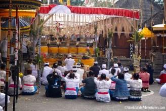 Living in Bali81