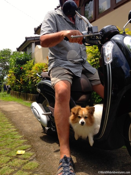 Riding a Scooter in Bali24