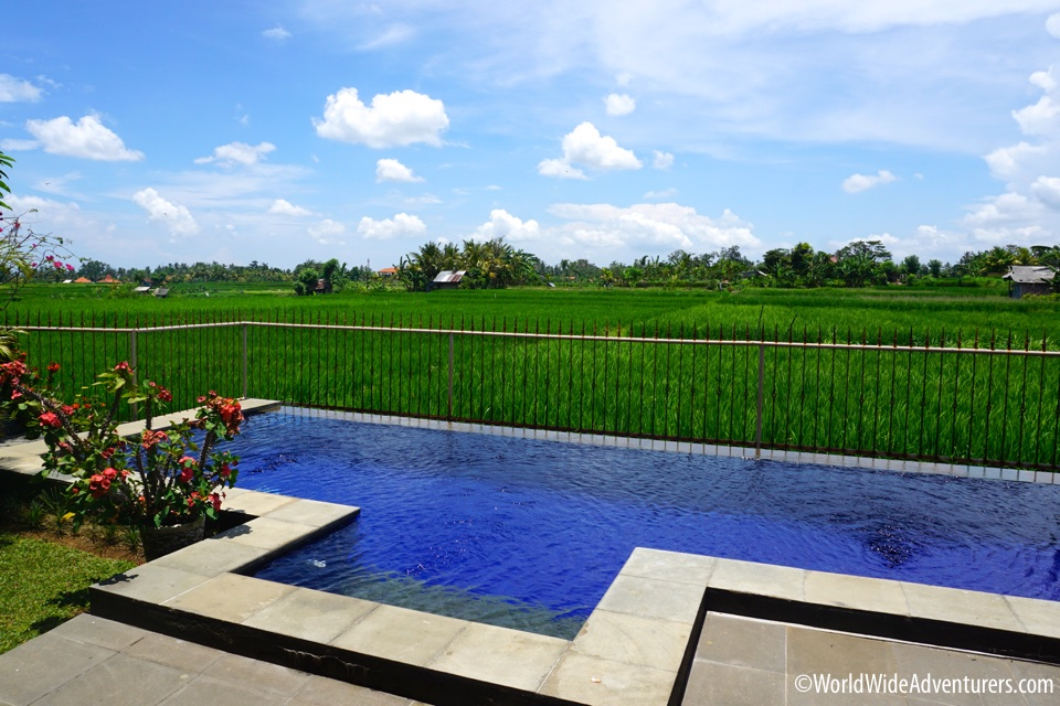 Living in Bali - Finding a Villa to Rent in Ubud
