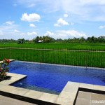 Living in Bali – Finding a Villa to Rent in Ubud