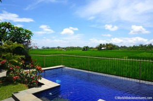 Living in Bali - Finding a Villa to Rent Ubud7