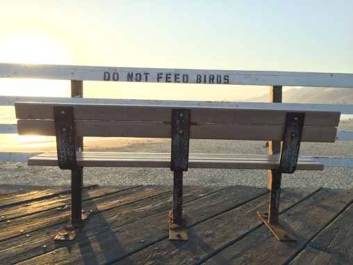 Bench at Pismo Beach Pier