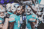 The Dolphins make me cry, AFC wild card