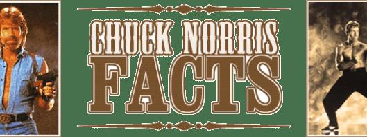 Chuck Norris: Ass Kicker