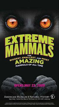 Extreme Mammals Sign
