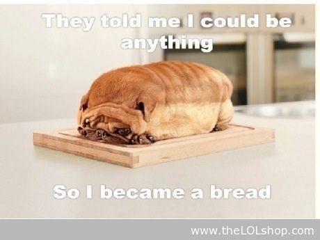 Pug Dog Bread