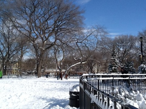 Snow on Ground in Park