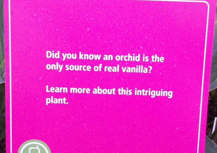 Orchids Vanilla Sign