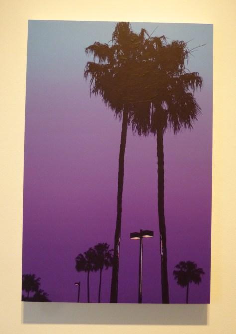 Glen Rubsamen Polygala Purple Palm Tree