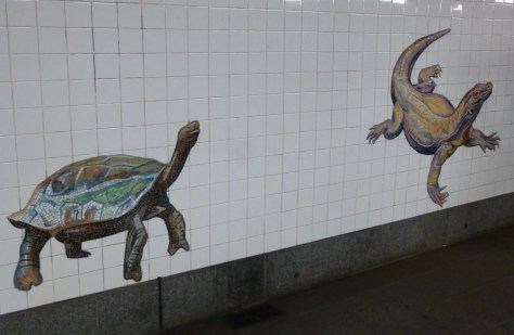 Turtle and Lizard