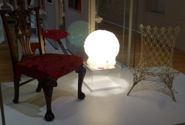 Moss Lamp Display