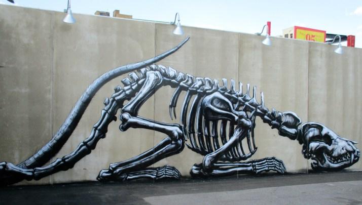 Roa Bones