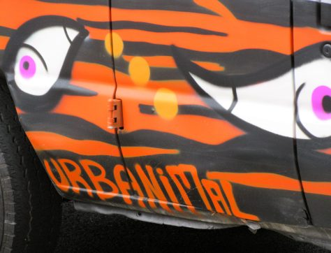 Urbanimal Tag