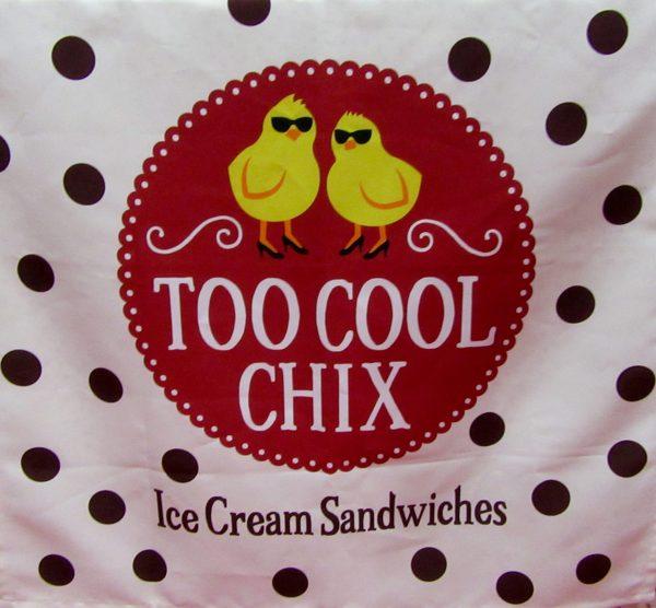 Two Cool Chix Signage