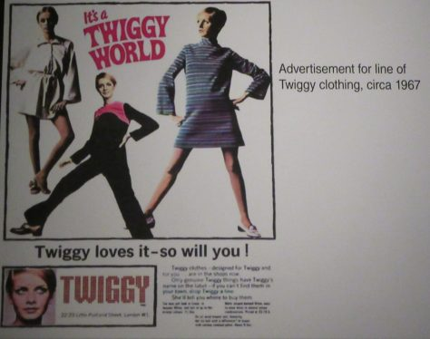 Twiggy Fashions