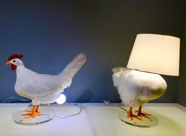 Chicken Lamps