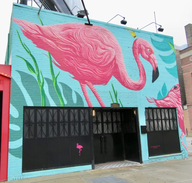Flamingo Rum Club