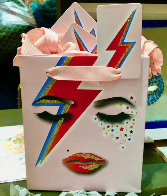 Aladdin Sane Gift Bag Photo By Gail Worley