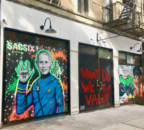 fauci spock mural by sacsix photo by gail worley