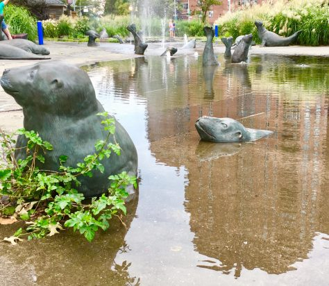 seal pool fountain photo by gail worley