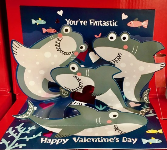 shark attack valentine card photo by gail worley