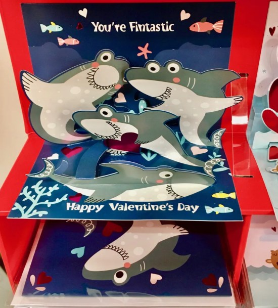 shark attack valentine card display photo by gail worley