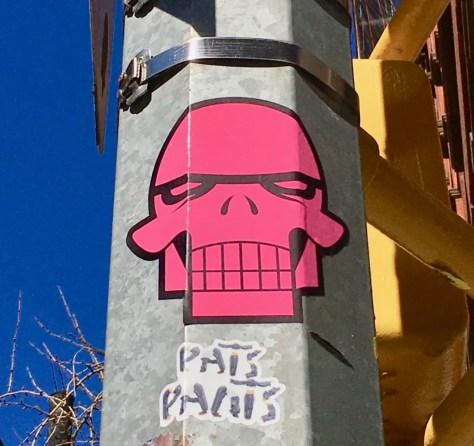 pink skull by matt siren photo by gail worley