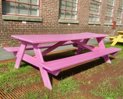 pink picnic table photo by gail worley