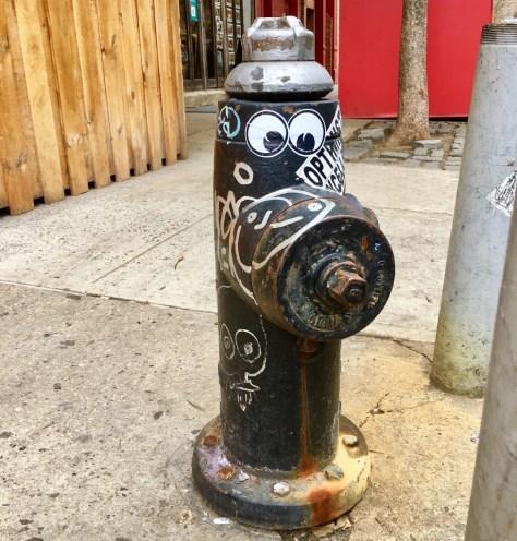 googly eye fire hydrant 1 photo by gail worley