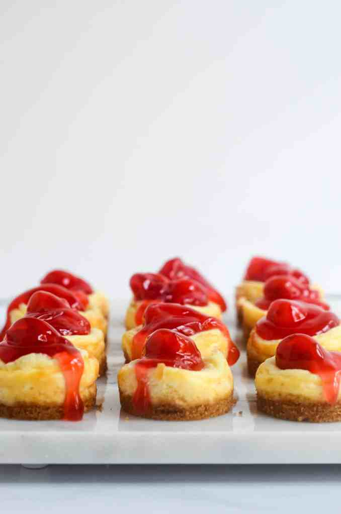 up close shot of rows of mini cheesecake bites