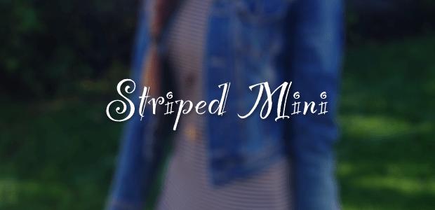 Striped Mini